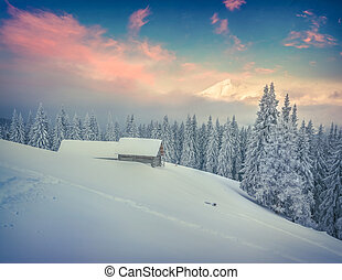 Foggy winter sunrise in mountains.