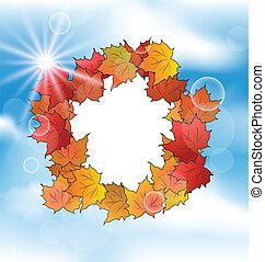 fogli azzurro, cielo, autunno, scheda, acero