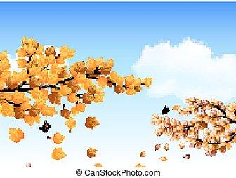 fogli azzurro, cielo, contro, autunno, fondo