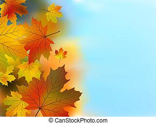 fogli azzurro, cielo, contro, autunno, verde, giallo
