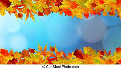 fogli azzurro, cielo, giallo, luminoso, contro, rosso