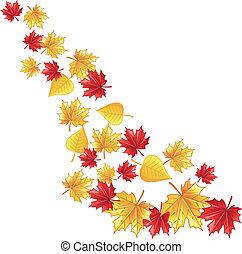 foglia autunno, cadere