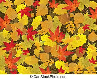 foglia autunno, fondo