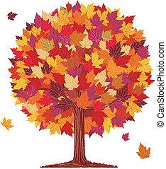 foglia autunno, palla, albero