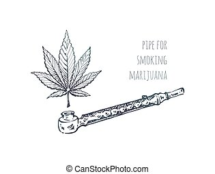 foglia canapa, schizzo, marijuana, tubo