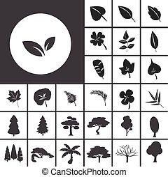 foglia, e, albero, icona