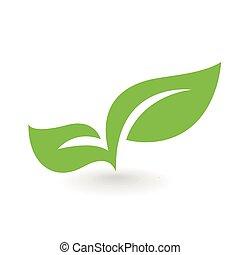 foglia, eco, isolato, illustrazione, vettore, verde, icona