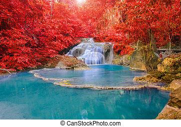 foglia, foresta, cascata, erawan, meraviglioso, profondo...