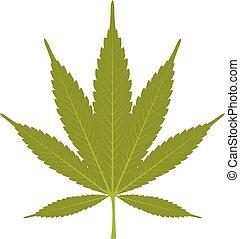 foglia, -, marijuana, canapa, fondo, bianco