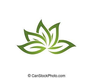 foglia, natura, simbolo, vettore, verde, sagoma, logotipo