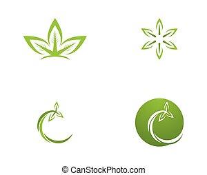 foglia, natura, vettore, sagoma, logotipo, icona