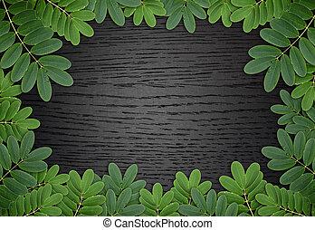 foglia verde, con, gocce, di, acqua, su, scuro, legno, fondo
