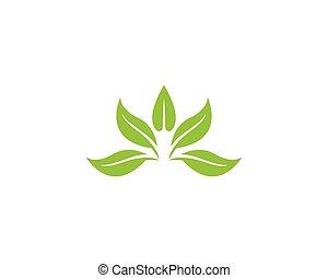 foglia, vettore, logotipo, natura, pianta