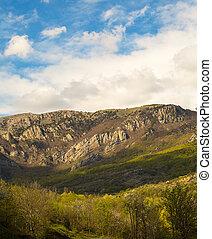 fogliame, montagne, soleggiato, passeggiata, foresta autunno, piede, coperto, piacevole, giorno