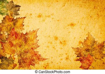 foglie, acero, carta, fondo, grunge