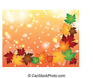 foglie acero, colorito, bordo, con, luce, effetti