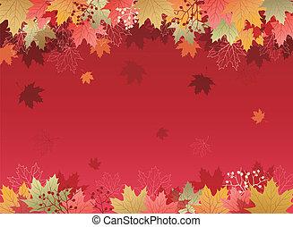 foglie, acero, fondo, autunno