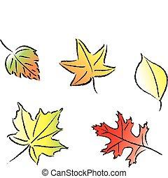 foglie, assortito, cadere