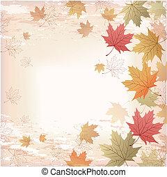 foglie, autunno, acero, fondo