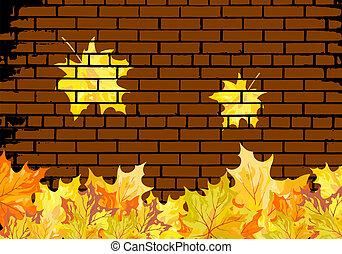 foglie, autunno, acero