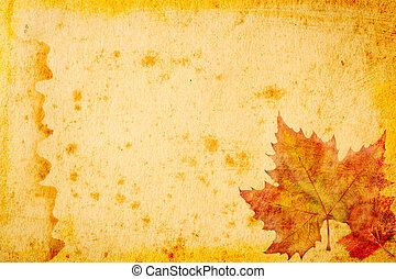 foglie, carta, grunge, acero, fondo