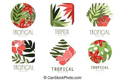 foglie, collezione, logotipo, geometrico, tropicale, vettore, fiori, disegno, rosso, illustrazione, esotico