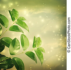 foglie, con, luci verdi, fondo