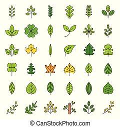 foglie, e, ramo, icona, set, pieno, contorno, disegno