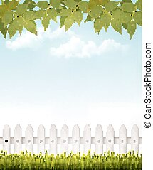 foglie, fondo, french., vector., verde, natura, bianco