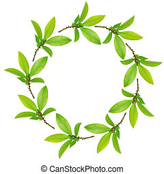 foglie, ghirlanda, baia