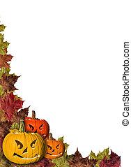 foglie, halloween, zucche, fondo, cadere, bianco, cornice