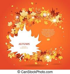 foglie, luminoso, fondo, acero