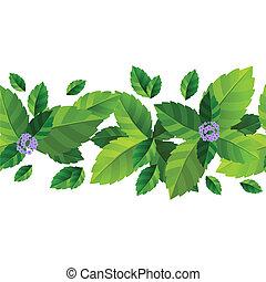 foglie, modello, menta, seamless