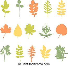 foglie, set, elementi