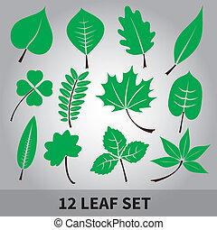 foglie, set, eps10, icona