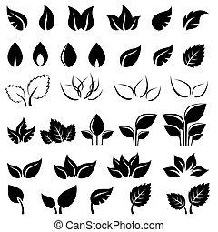 foglie, set, nero, isolato