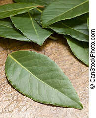 foglie, tagliere, baia