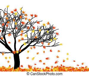 foglie, torto