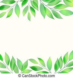 foglie, verde, cornice