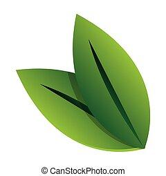 foglie, verde, icona