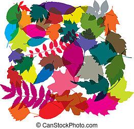 foglie, vettore, colorito, fondo