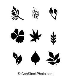 foglie, vettore, set, icona
