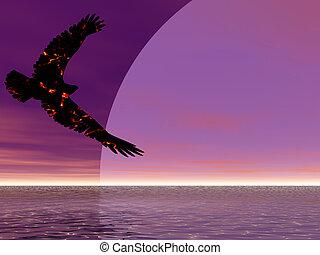 fogo, águia, ascendendo
