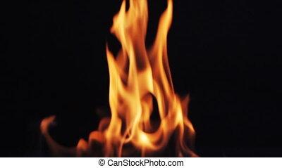 fogo, chamas, ligado, experiência preta