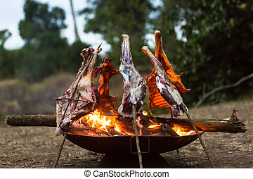 fogo, cozinhar, cabra, acampamento
