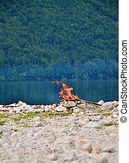 fogo, ligado, um, fundo, de, lago