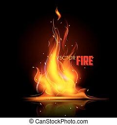 fogo, realístico, chama, queimadura