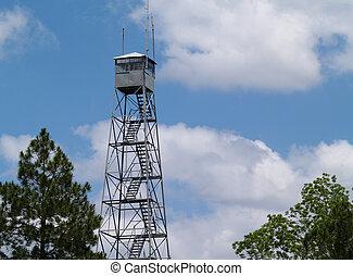 fogo, torre vigia, em, geórgia sul