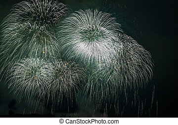 fogos artifício exibem