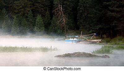 fogy landscape